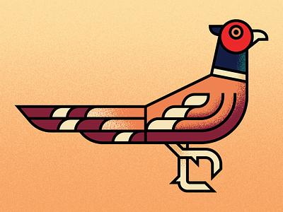 Ring-necked Pheasant wildlife birds bird illustration fowl pheasant illustration animal illustration