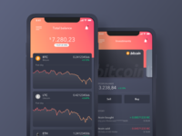 Cryptocurrency Wallet - Dashboard and Investments