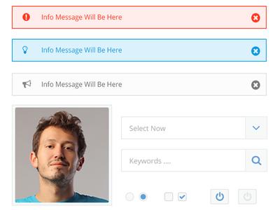 Simple UI Profile ui kit ui kit admin info message drop down switch radio form profile