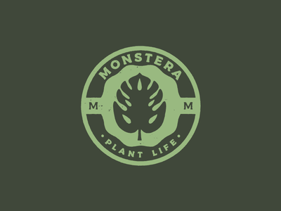 Monstera, Plant Life