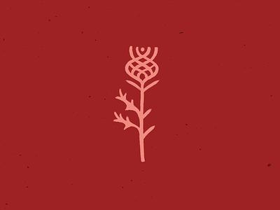 Thistle thorns graphic flower icon logo illustration design celtic thistle scotch scottish