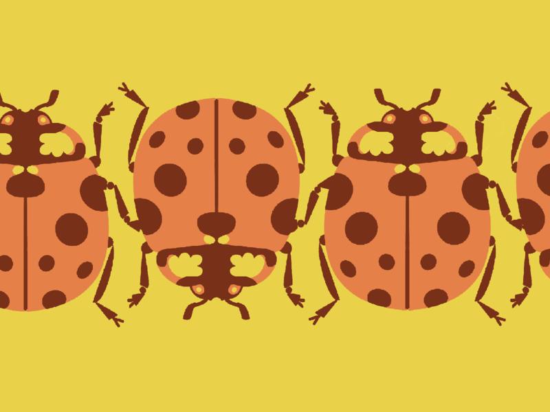 Ladybird Ladybird pattern bold insect ladybugs ladybug warm print duotone illustration graphic
