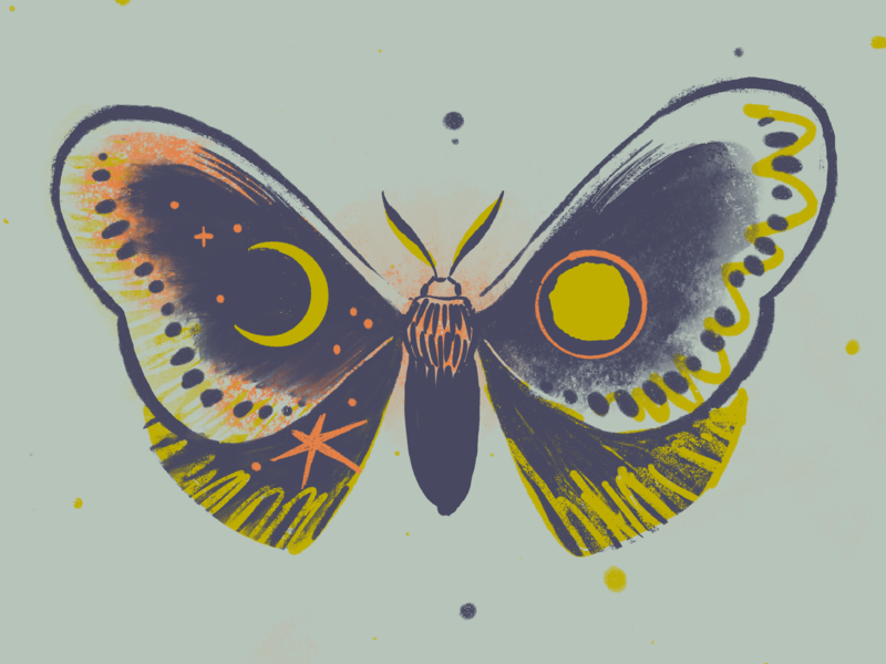 May Moth moody palette bug illustration agency nature insect graphic design print illustration