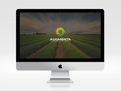 Augmenta Web Design