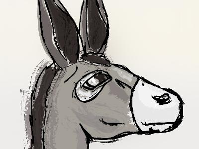 Donkey!