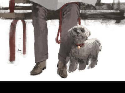 Woof colour illustration wip marc aspinall
