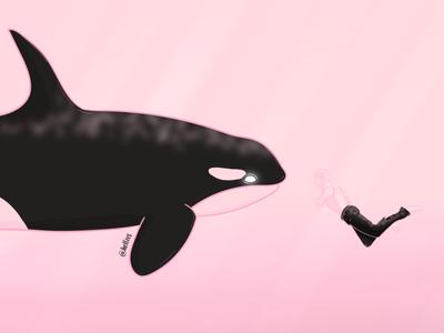 Orca boy