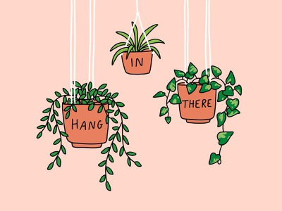 Hang in there line drawing pink peach house plants hanging plants quote hang in there