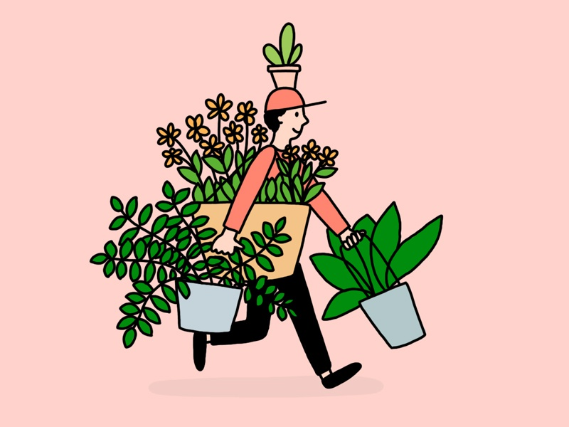 Plant Delivery Guy By Ashleigh Green On Dribbble