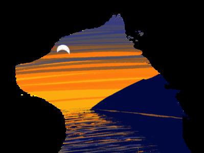 Bear Coast