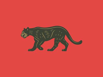 Puma illustration mountain lion cougar puma