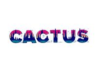 Cactus Type Experiment 2