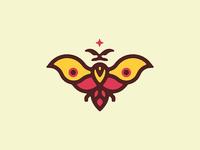 Nagual Moth