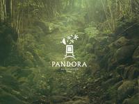 Pandora Association