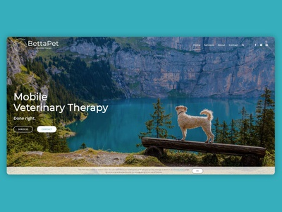 Website | BettaPet