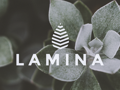 Lamina minimal clean bold logodesign plant leaf icon corporate design branding logo