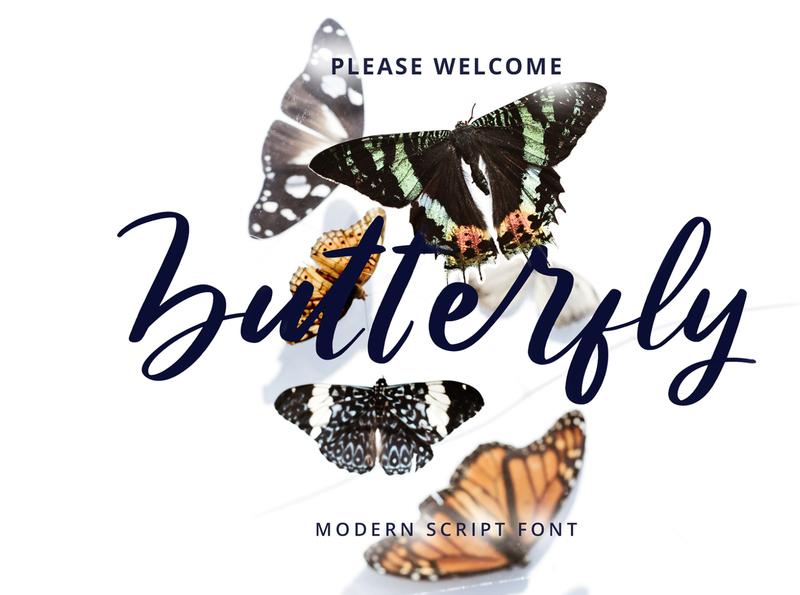 Butterfly Modern Script Font