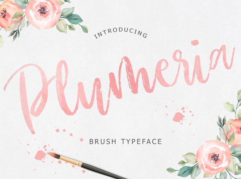Plumeria Brush Script Font