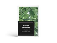 Nature – Multipurpose Magazine Brochure