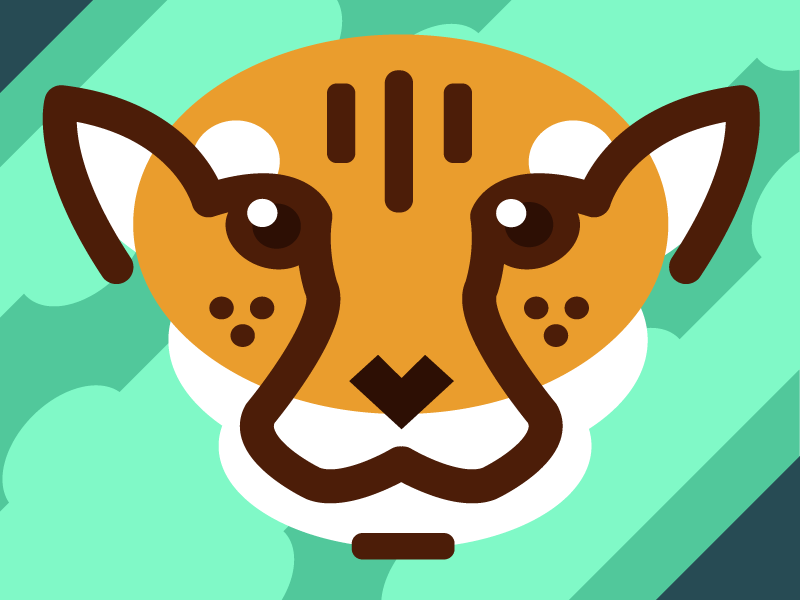 Cheetah in the Brush hunter stare eyes africa face cheetah cat