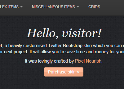 Bootstrap Skin bootstrap skin edit css browser twitter bootstrap codecanyon work in progress