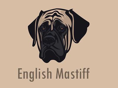 English Mastiff vector flat mascot logo design logo tshirt art mascot design vector art english mastiff dogs animals graphic branding portait portrait illustration illustration