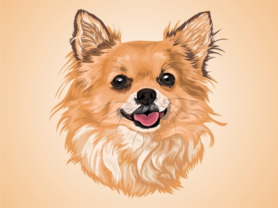 Vector Pet design character mascot cartoon animal drawing illustraion color pet vector dog