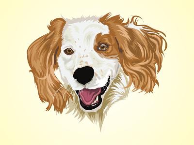 Vector Pet color design mascot dog cartoon illustration petshop vector animal art cartoon animal character animal pet