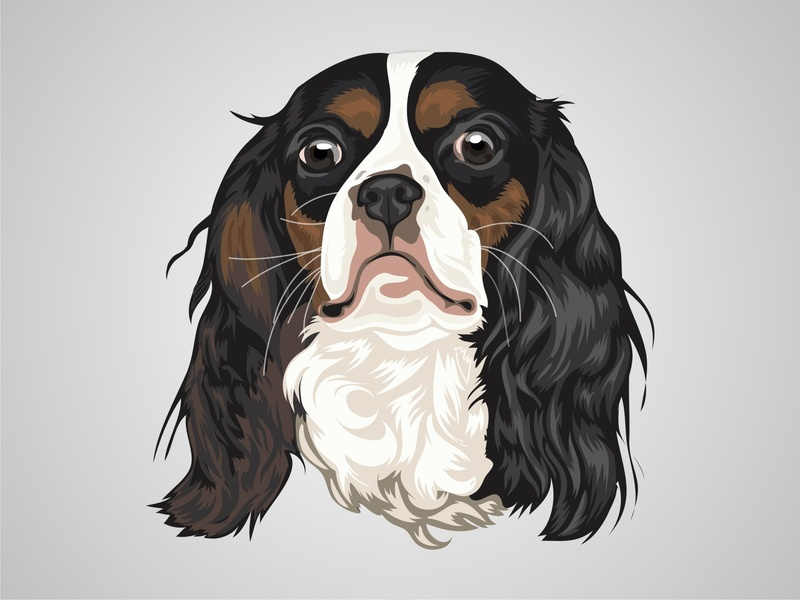Vector Pet dog petshop design art color drawing illustration cartoon character animal pet vector