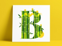 36 Days B • Bambusa Emeiensis🎋