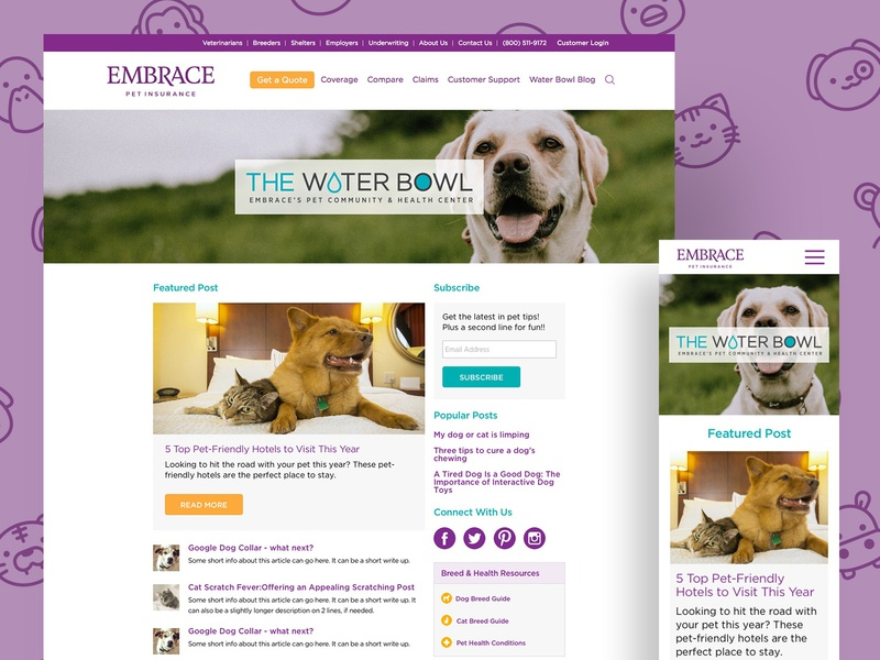 Pet Insurance Blog animals sketchapp sketch mobile desktop ui ux cat dog blog insurance pet