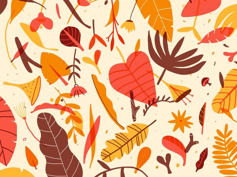 Autumn colors plants pattern nature seasons illustration design leaves fall autumn
