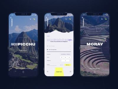 ToCusco - Traveling Agency movil peruvian map booking travel agency cusco peru layout exploration exploration flat app brand identity ui ux minimal web design