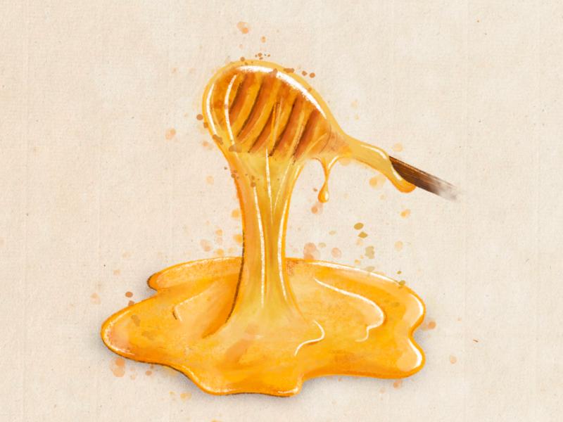 Honey procreate food honey digital-art illustration