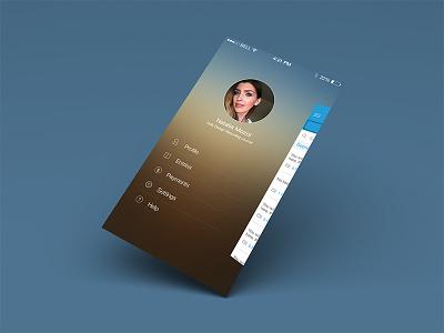 Journal App Side Menu hamburger warm gradient menu ios7 blur icons mobile ux ui iphone list