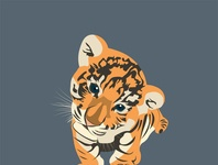 Tigre   Tiger   thumb