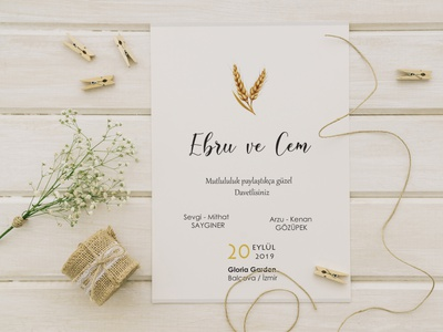Wedding Invitation design invitation wedding card wedding invitation wedding