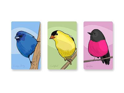 Bird Trio bird illustration drawing graphic design colors birds bird illustration art graphics design vector illustrator illustration