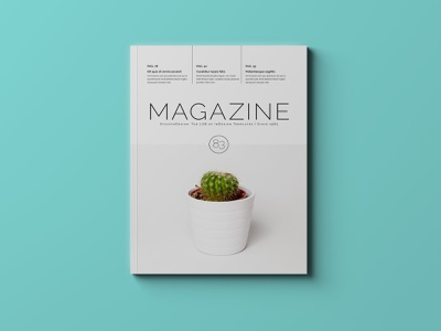 Multipurpose Magazine Template magazine design magazine cover magazine template adobe indesign indesign template