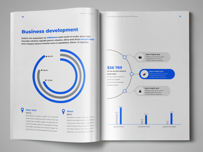 Business Plan Template editorial design infographic design business plan indesign template