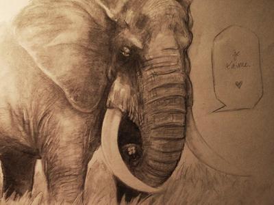 Je t'aime elephant sketch quickie