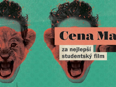 Movie awards poster vintage movie cub face lion orange green poster