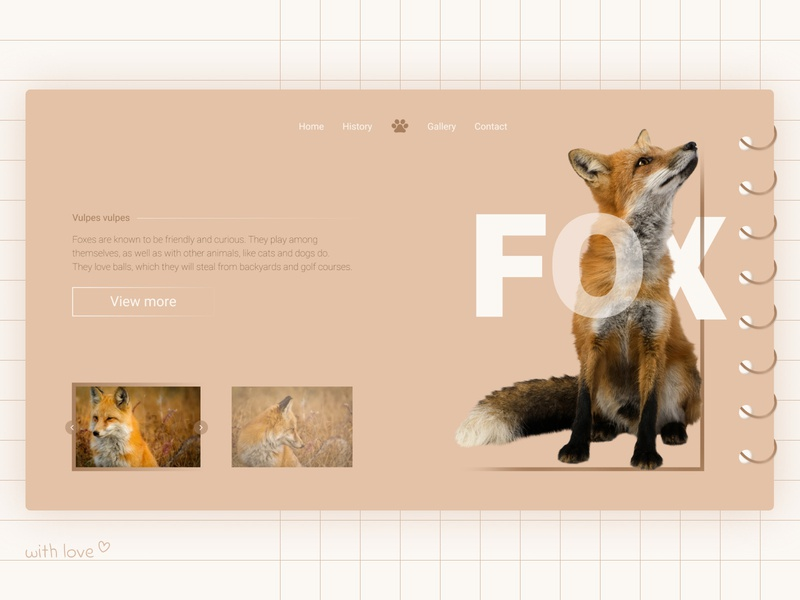 Fox squared school animals fox paper notebook pink minimalistic pastel ui  ux