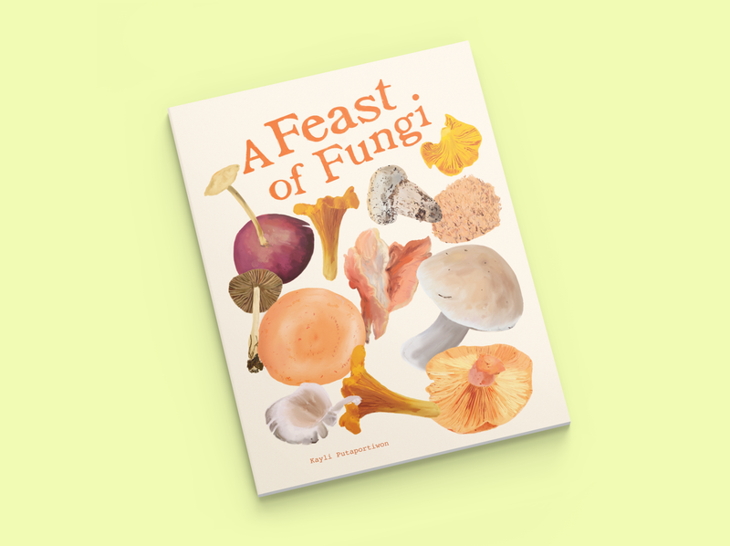 A Feast of Fungi mushrooms book cover mockup activity book illustration
