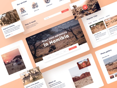 Namibia trips - Landing page figma trip advisor trip planner travel agency redesign landing page landing photos travelling trips cards journey savanna safari desert expedition traveling trip travel