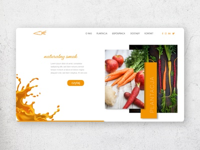 Web for Carrot plantation