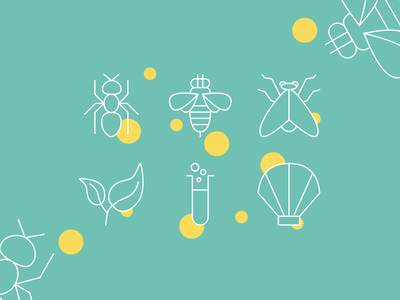 Nature Icons shell chemicals leaf fly bee ant ux ui app design web icons icon system icon set icons iconography icon designer brand icons app icons