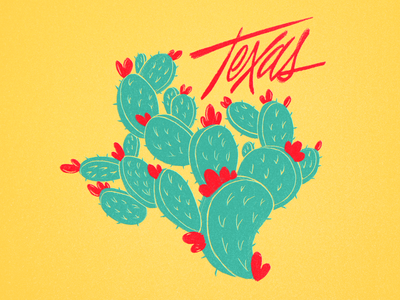 TX Cactus procreate tx illustration cactus texas