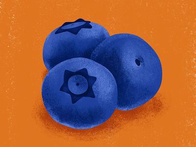 Blueberries summertime food illustrations fruity summery summer fruit illustration food illustration blueberry fruit fresco adobe fresco digital painting color illustration