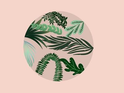 Round leafy matter